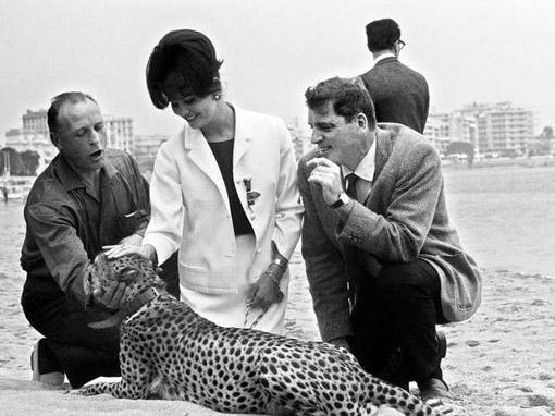 La actriz Claudia Cardinale promocionando El gatopardo acompañada de un guepardo, una de las anécdotas de Cannes más curiosas