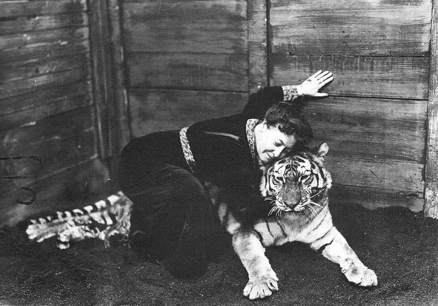Alice y un tigre